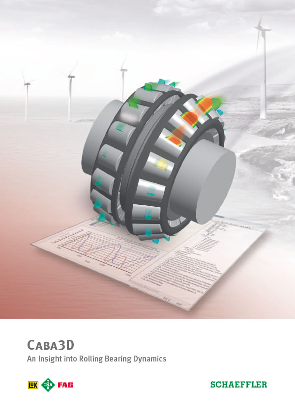 Caba3D - An Insight into Rolling Bearing Dynamics