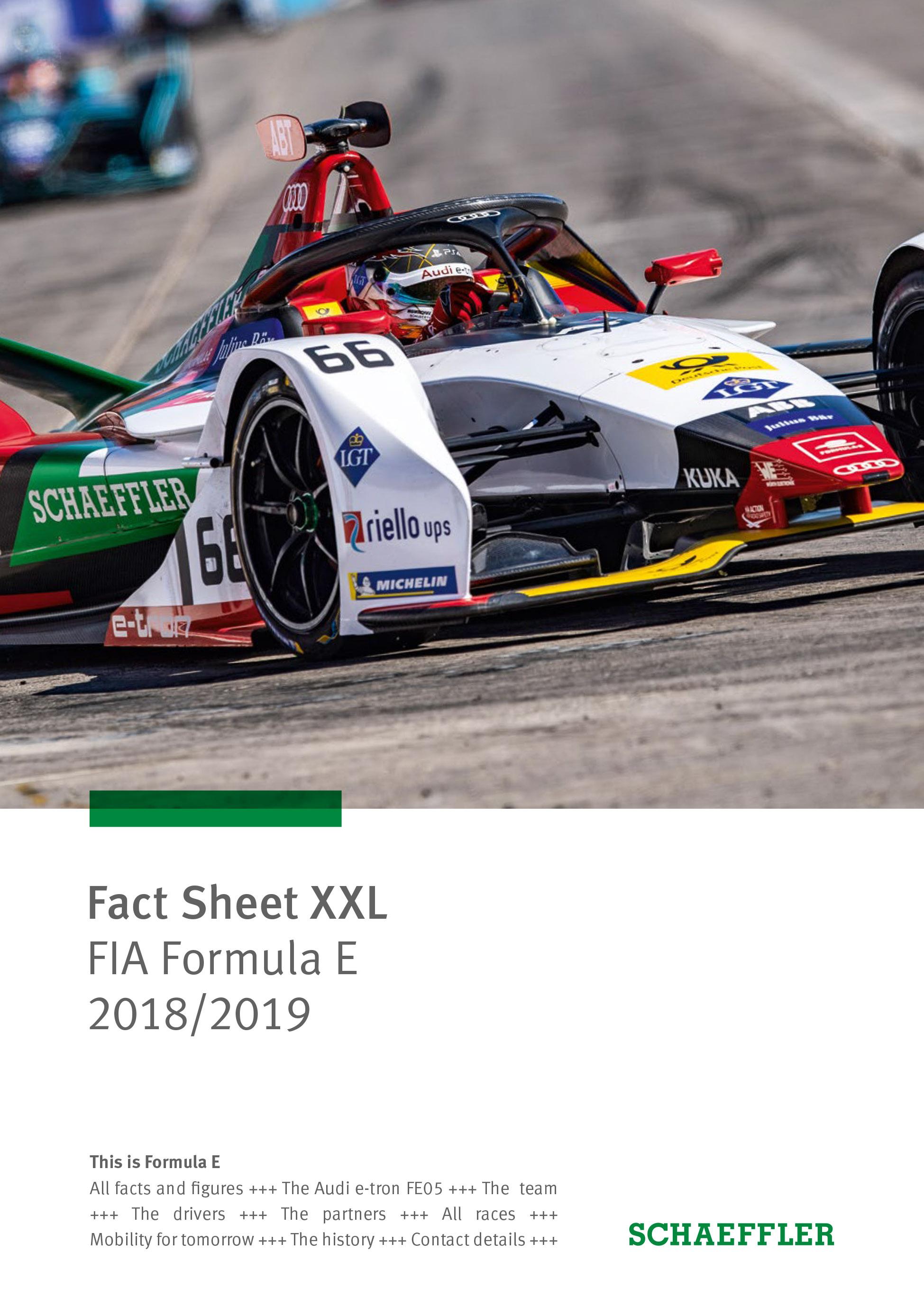 Schaeffler in motorsport: ABB FIA Formula E electric racing