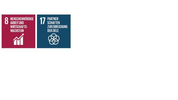 """Mit seinen Aktivitäten und Maßnahmen im Handlungsfeld Strategie und Management trägt Schaeffler zu den Sustainable Development Goals (SDGs) """"Nachhaltiges  Wirtschaftswachstum und menschenwürdige Arbeit für alle"""" (SDG 8) sowie """"Umsetzungsmittel und globale Partnerschaft  stärken"""" (SDG 17) bei."""