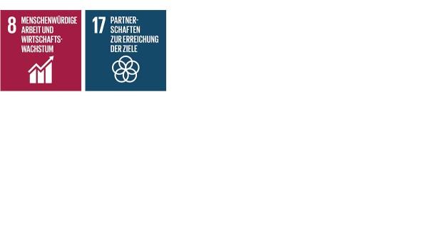 """Mit seinen Aktivitäten und Maßnahmen im Handlungsfeld Nachhaltiges Wirtschaften trägt Schaeffler zu den SDGs """"Nachhaltiges Wirtschaftswachstum und menschenwürdige Arbeit für alle"""" (SDG 8) sowie """"Umsetzungsmittel und globale Partnerschaft stärken"""" (SDG 17) bei."""
