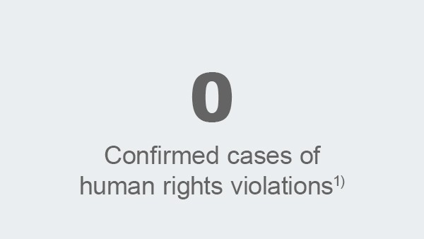 Confirmed cases of human rights violations