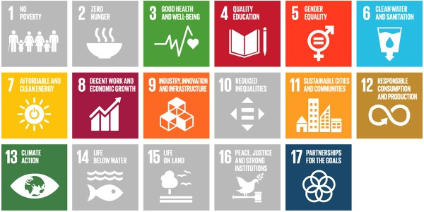 Sustainability at Schaeffler: Sustainable Development Goals