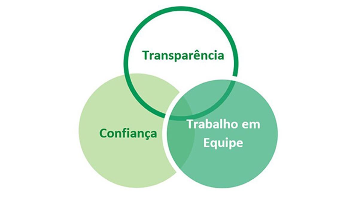 Estes dois últimos, combinados a mais um item, compõem o que chamamos de nossos 3Ts (deriva-se do inglês - Transparency, Trust and Teamwork)