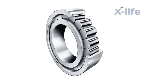 Schaeffler rolling bearings and plain bearings: Full-complement cylindrical roller bearing