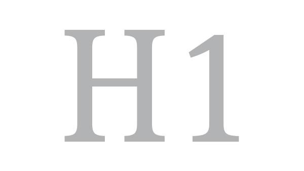 Schaeffler Group: Interim Report H1 2016
