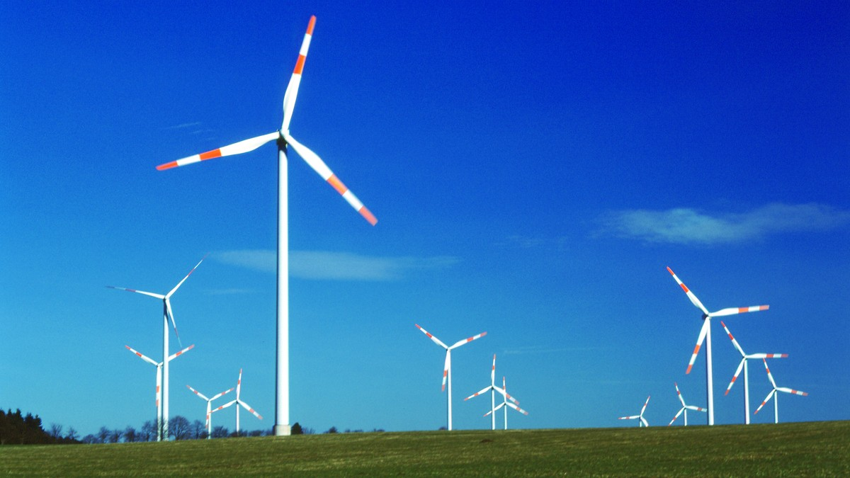 Bearing solutions for wind turbines